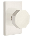 Emtek Octagon Modern Door Knob with Modern Rectangular Rosette